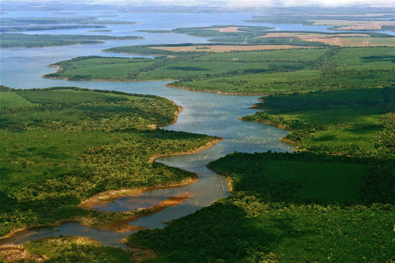 Flying_Over_Esteros_del_Iberá_The_kingdom_of_water,_North-eastern_Argentina