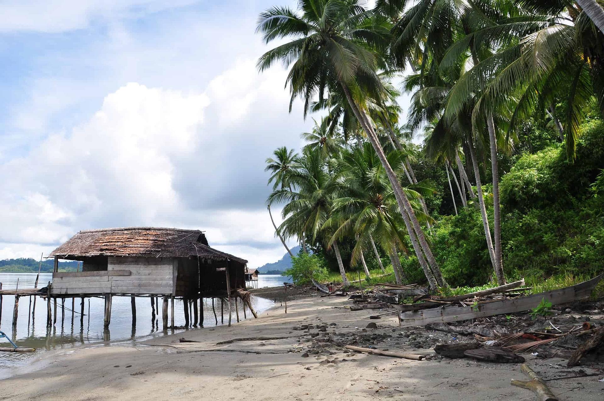 Tropical Beach - Jelle Visser, Creative Commons BY 2.0