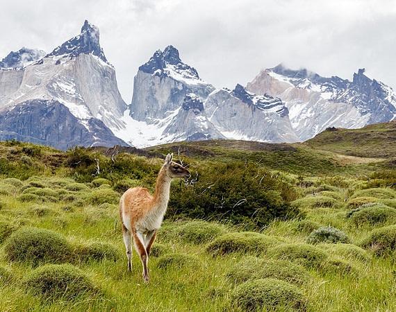 La Patagònia sense fronteres