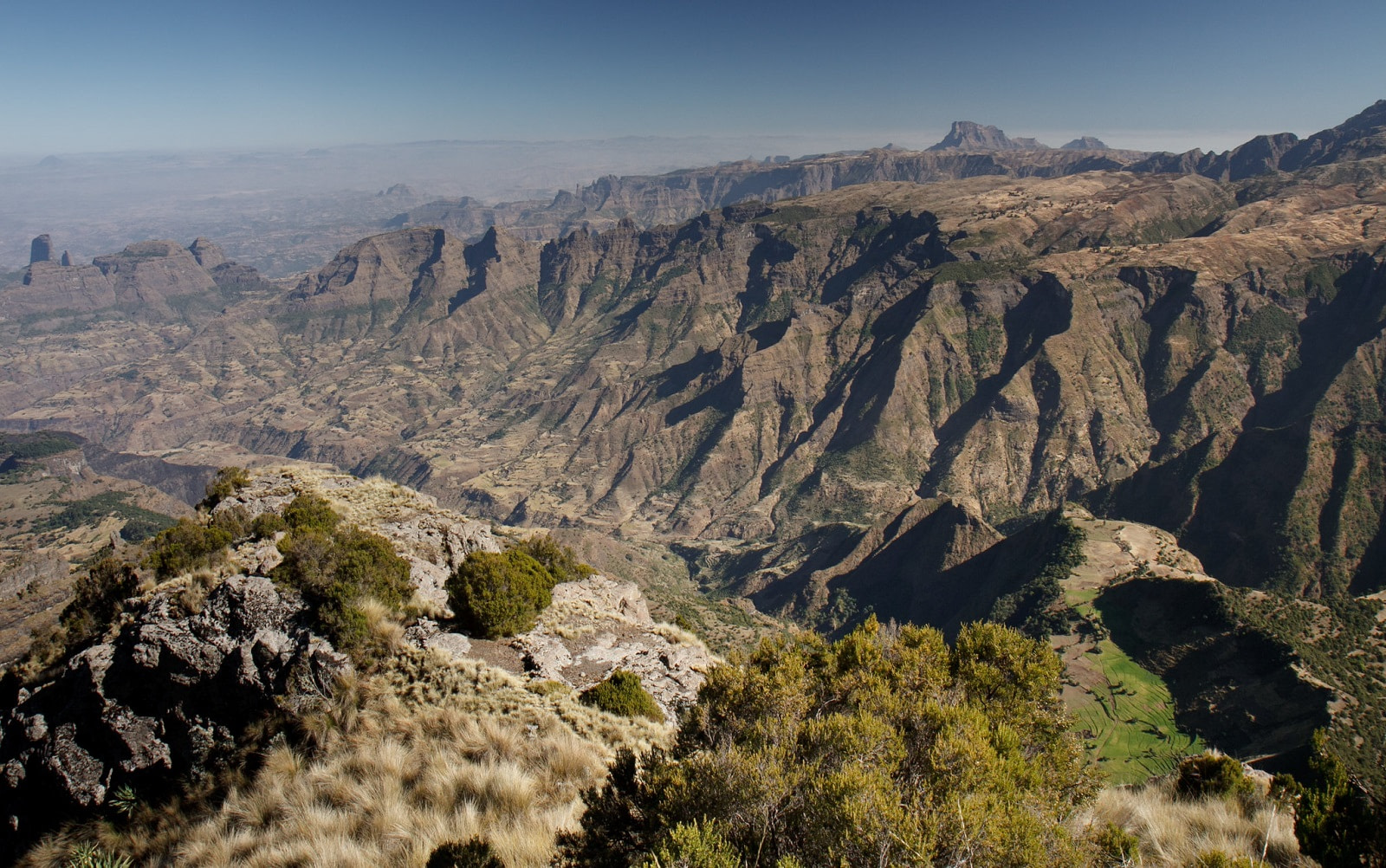 Simien, Petr Meissner by 2.0